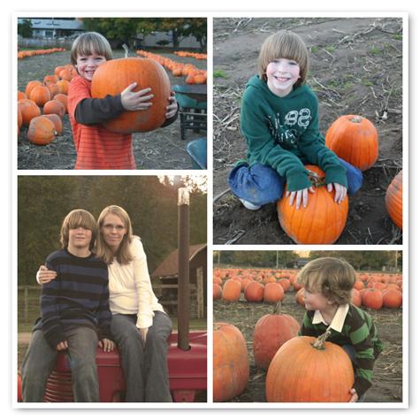 Pumpkinpatchmosaic1