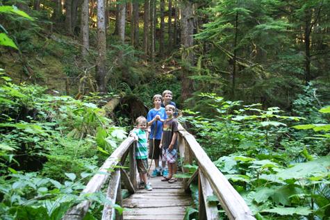 Boysrainforest