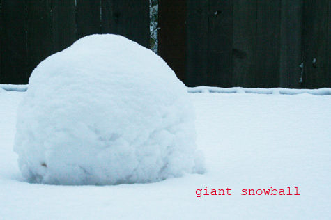 Giantsnowball